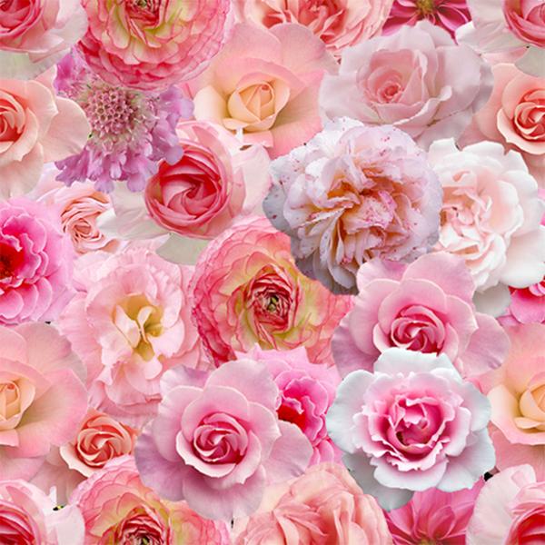 zz fond ecran fleur de roses. Black Bedroom Furniture Sets. Home Design Ideas