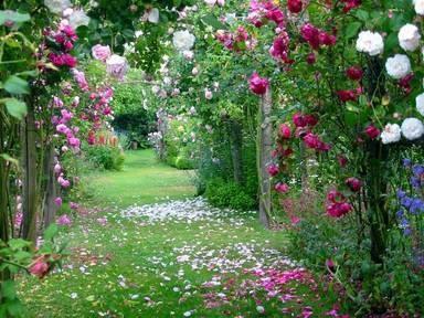 paysages jardins allees chemins